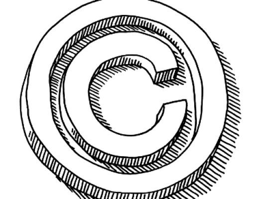 Schneider Rothman copyright